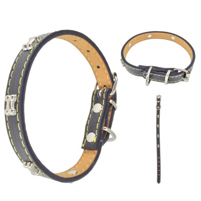 Koiran kaulapanta - 30-35 cm