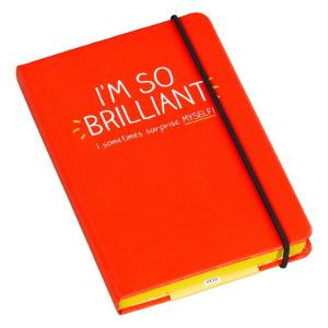 A6 Notebooks - I'm So Brilliant